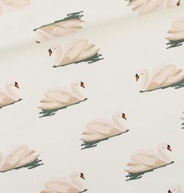 Swan FT