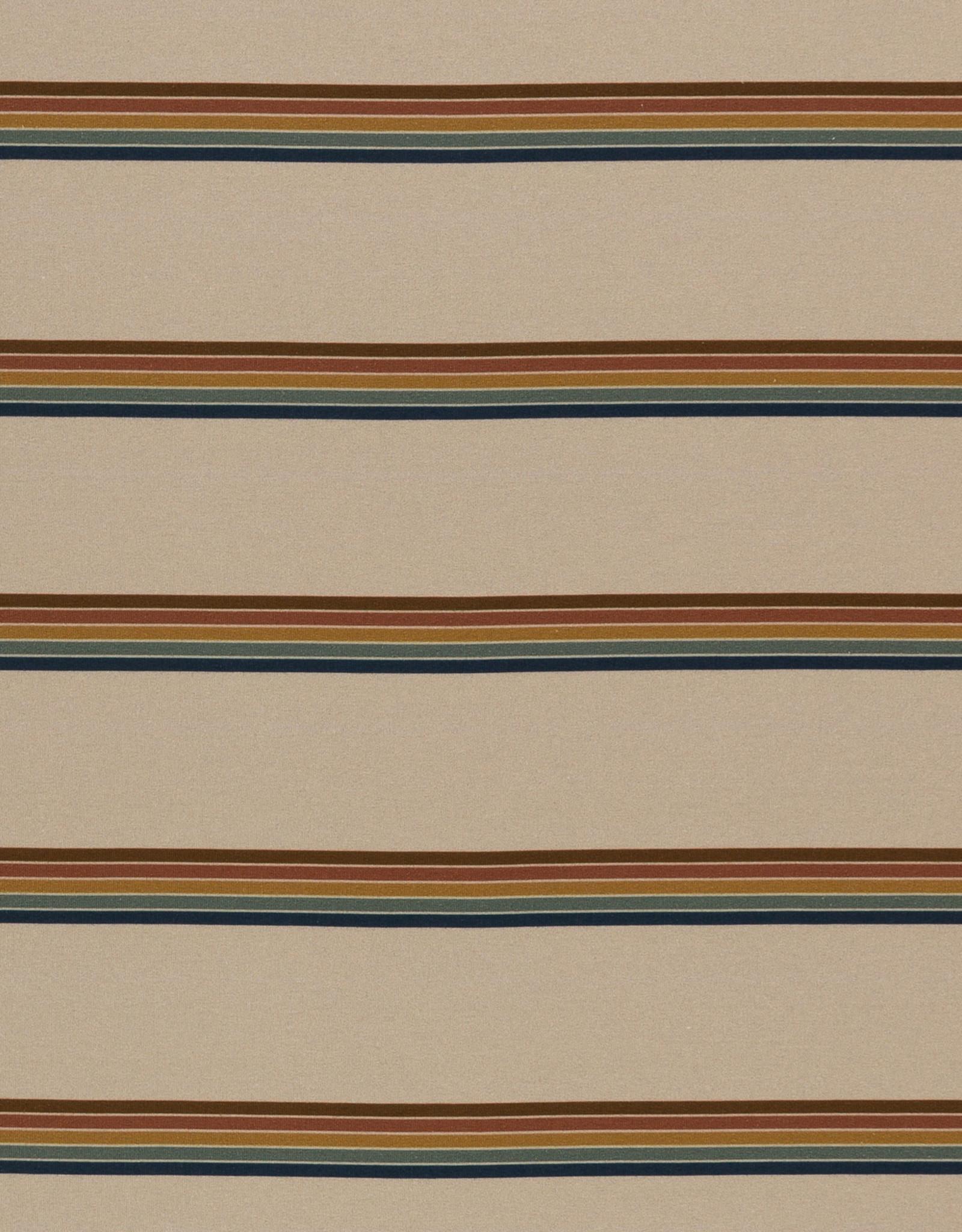 FT gestreept regenboogkleuren