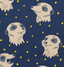 Meerkat dark blue