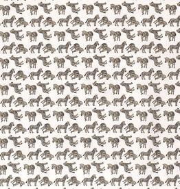 Katoen zebra