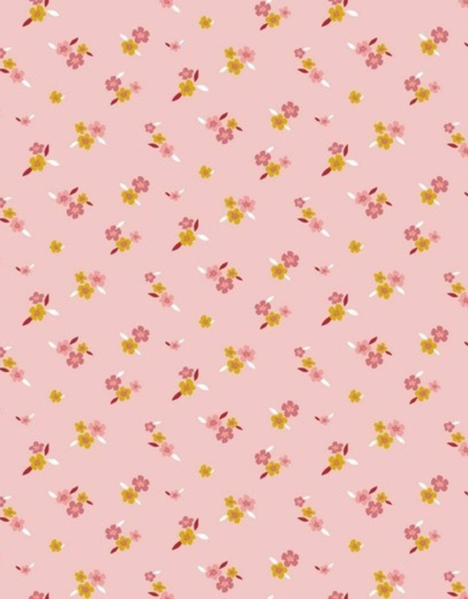 Poppy Lovely flowers rose