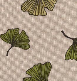 Gingko leaves green