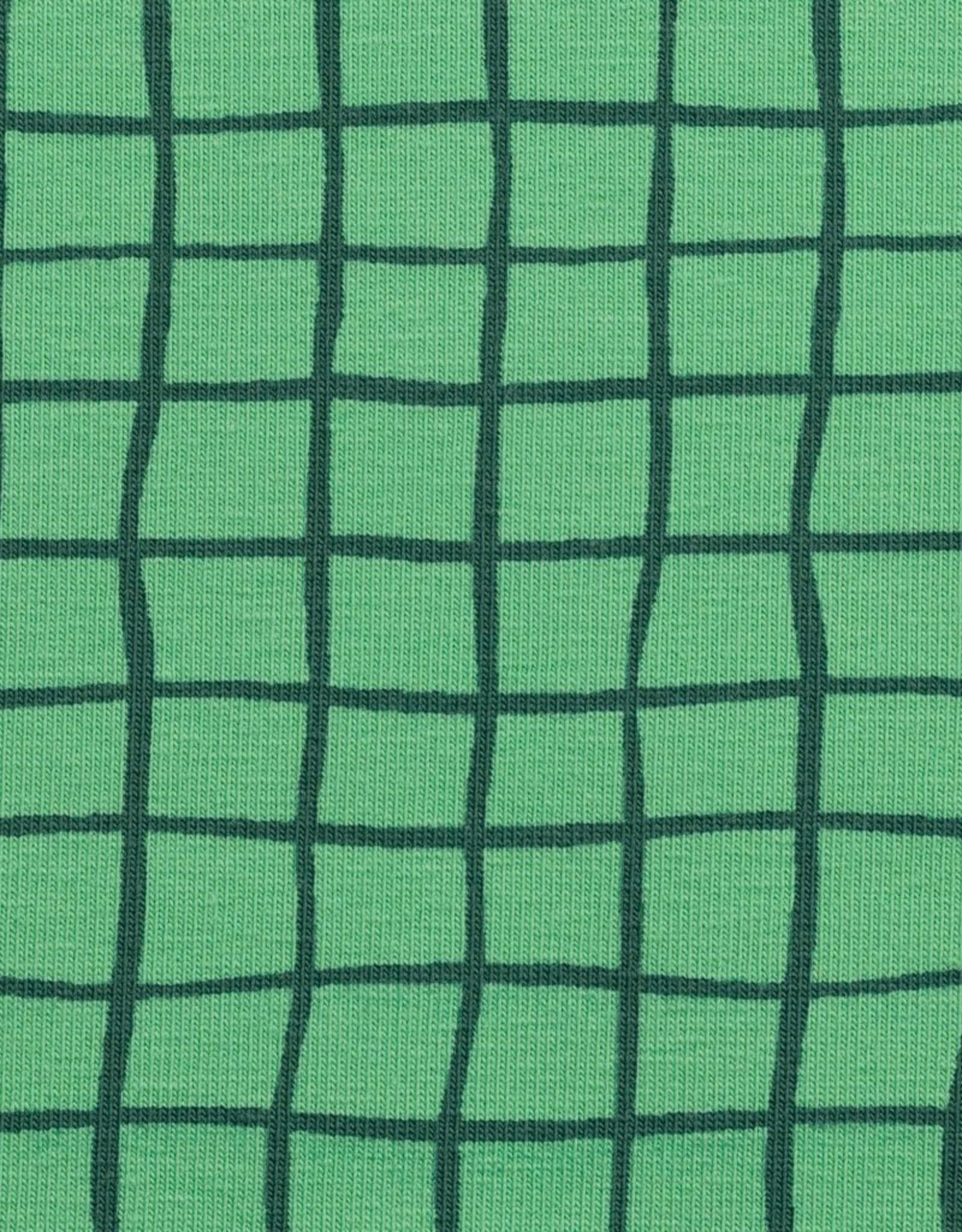 Tricot groen geruit