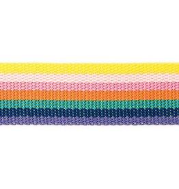 Rico Design Tassenband rainbow 40mm x 2m