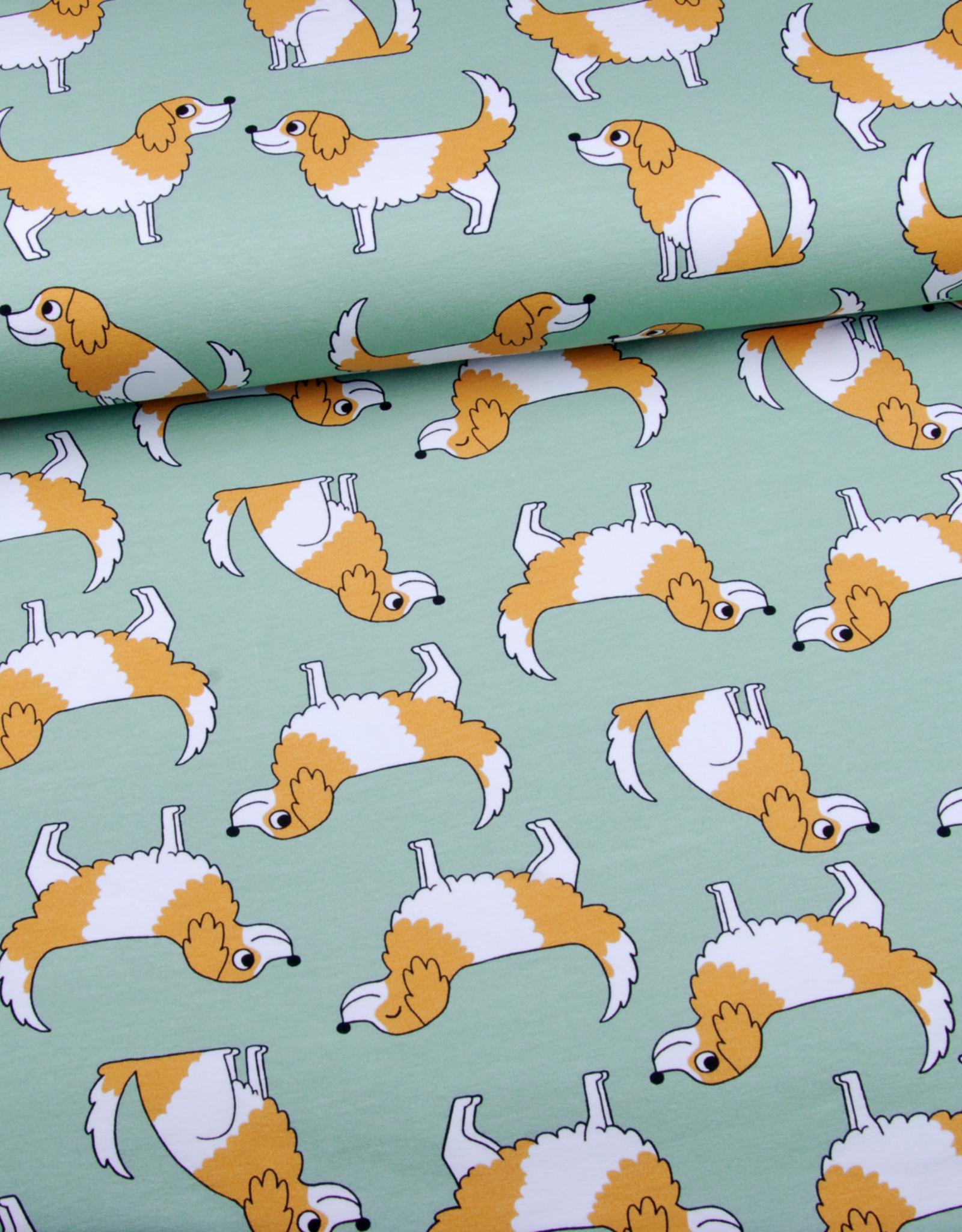 Eva Mouton Doggy green FT