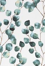 Canvas eucalyptus