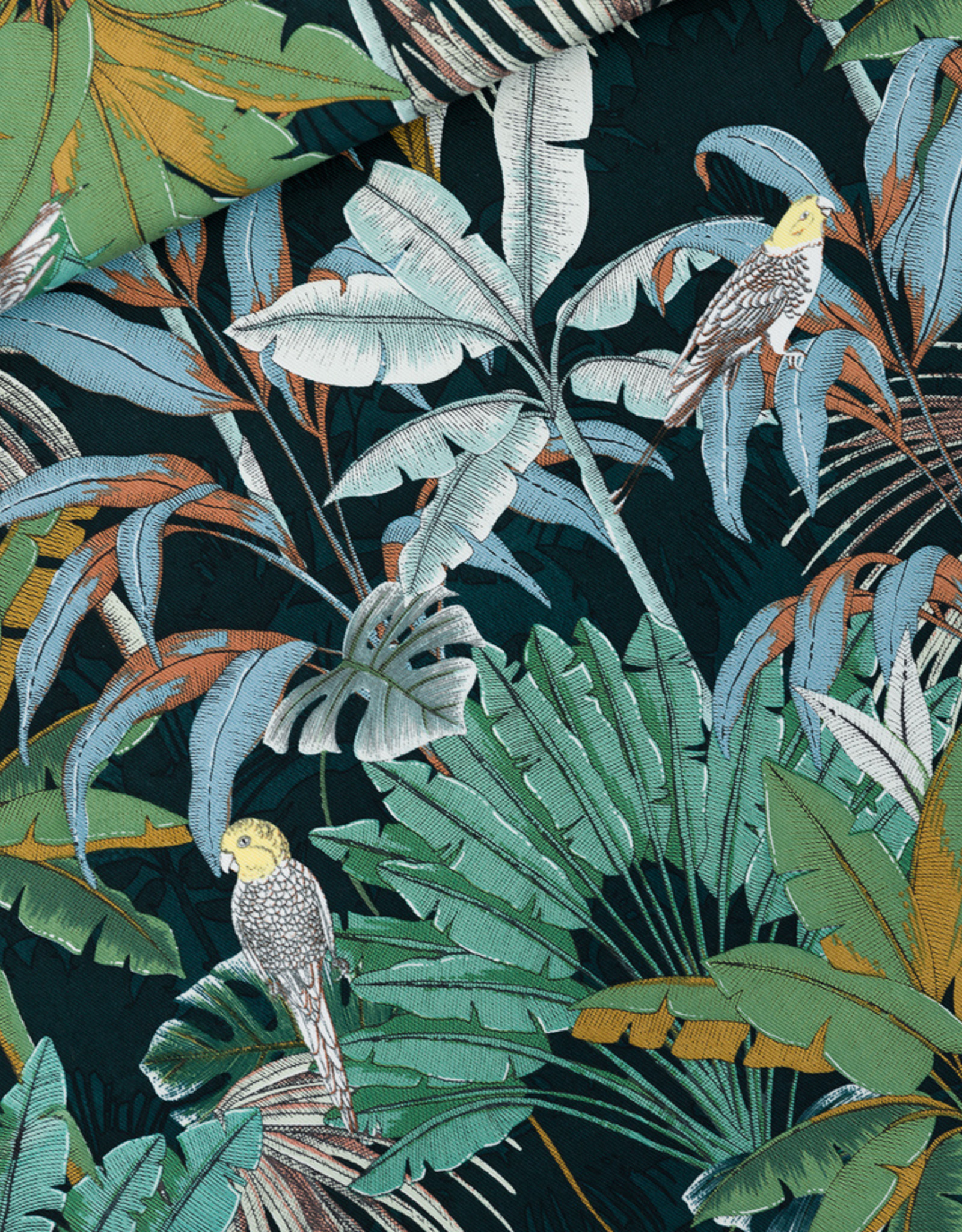 SYAS Jungle cotton canvas gabardine