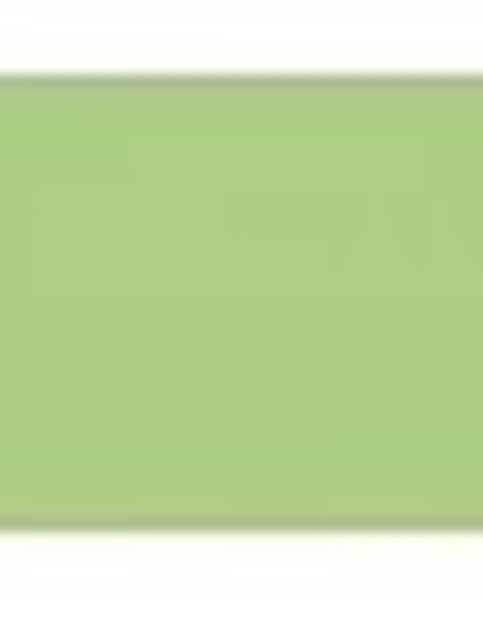 STAHLS Sportsfilm CAD-CUT® kleur Pastekl green 420