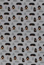 Moles grey