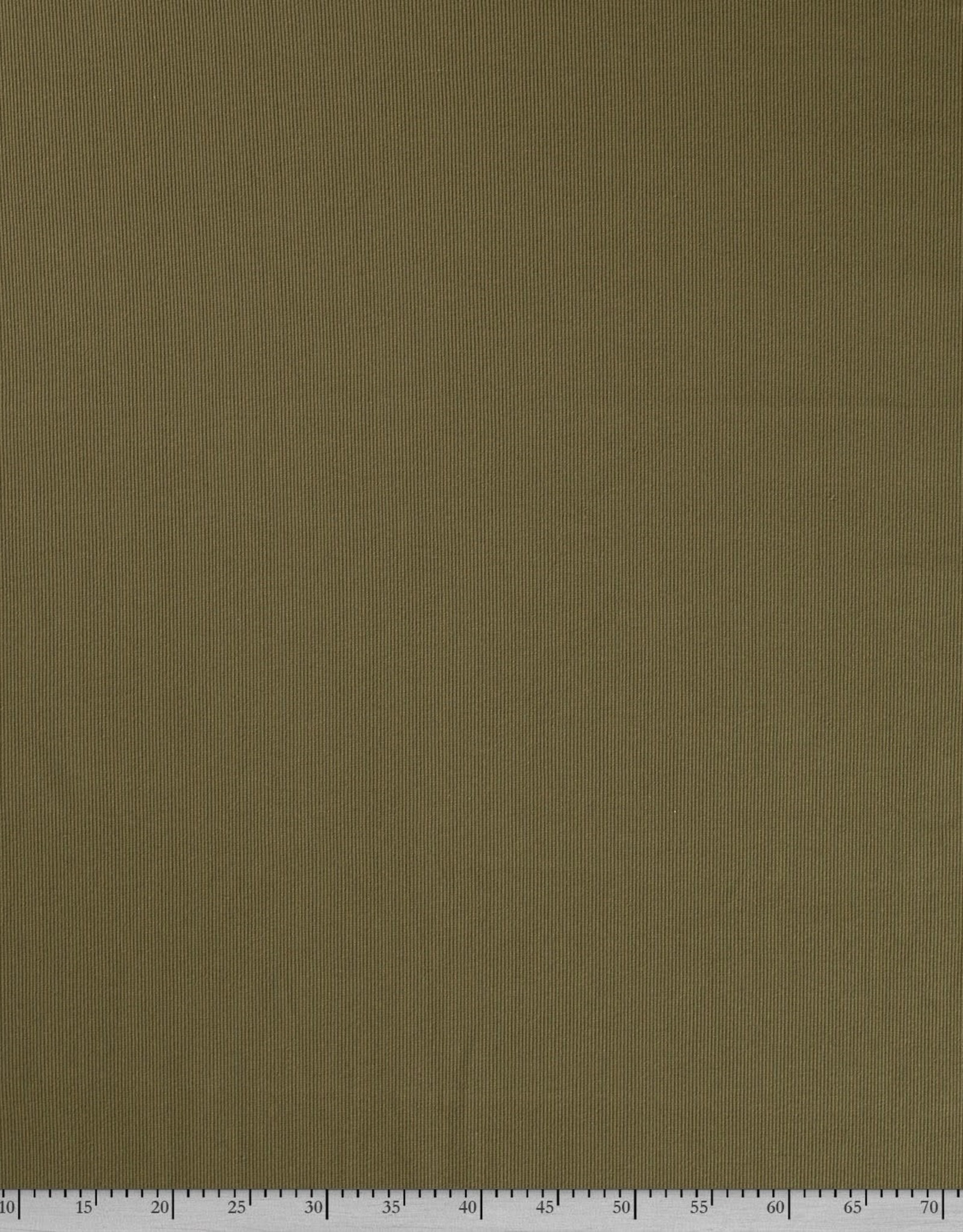 Ribjersey kakigroen