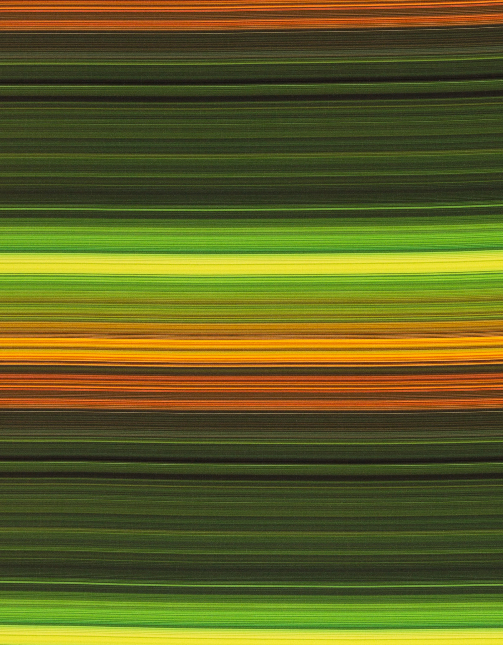 Softshell stretch multi stripes dark green