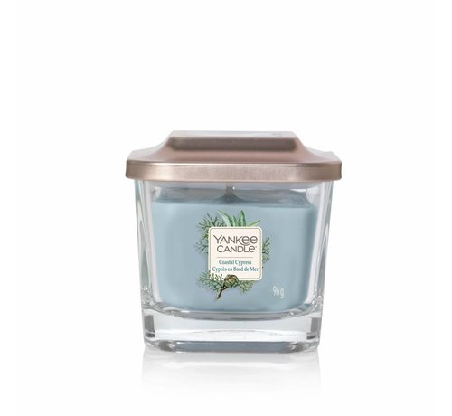 Yankee Candle Coastal Cypress - Small Vessel
