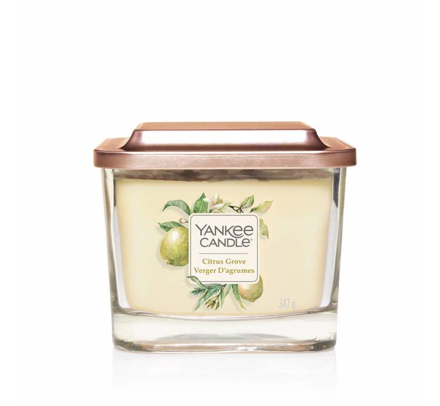 Citrus Grove - Medium Vessel