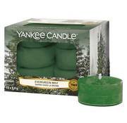 Yankee Candle Evergreen Mist - Tea Lights