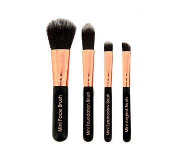 Makeup Revolution Pro Go Set