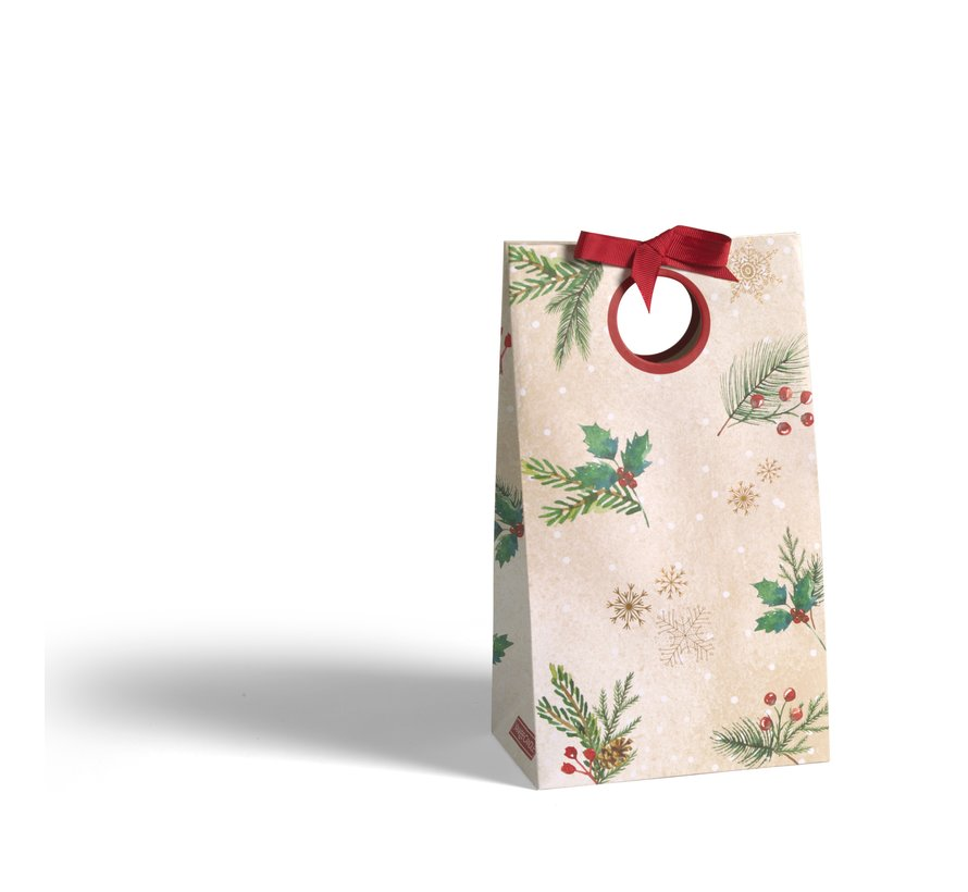 Magical Christmas Morning Make Your Own Gift Bag