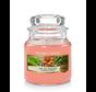 The Last Paradise - Small Jar