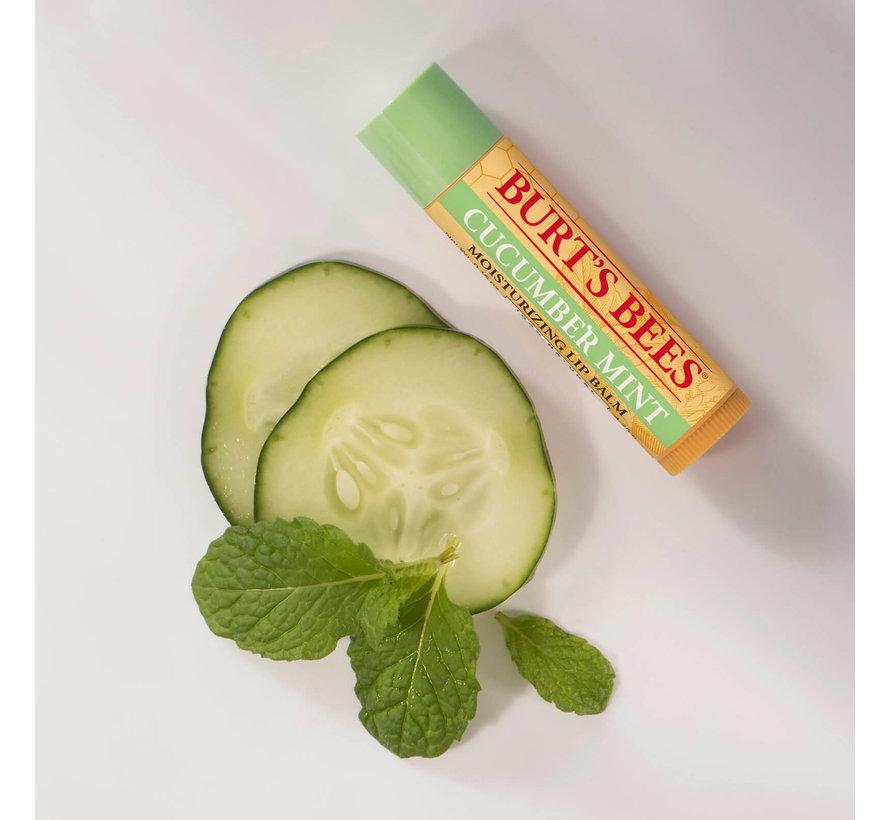 Lip Balm Cucumber Mint