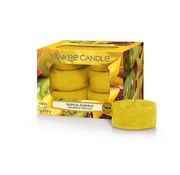 Yankee Candle Tropical Starfruit - Tea Lights