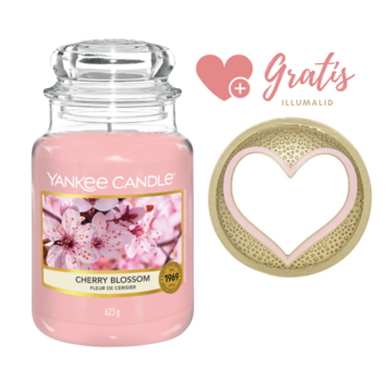 Yankee Candle Cherry Blossom - Large Bundle