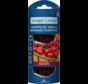 Black Cherry - Scentplug Refill