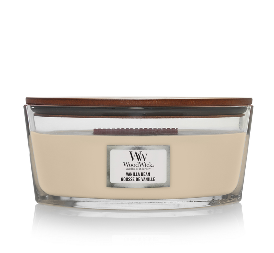 Vanilla Bean - Ellipse Candle