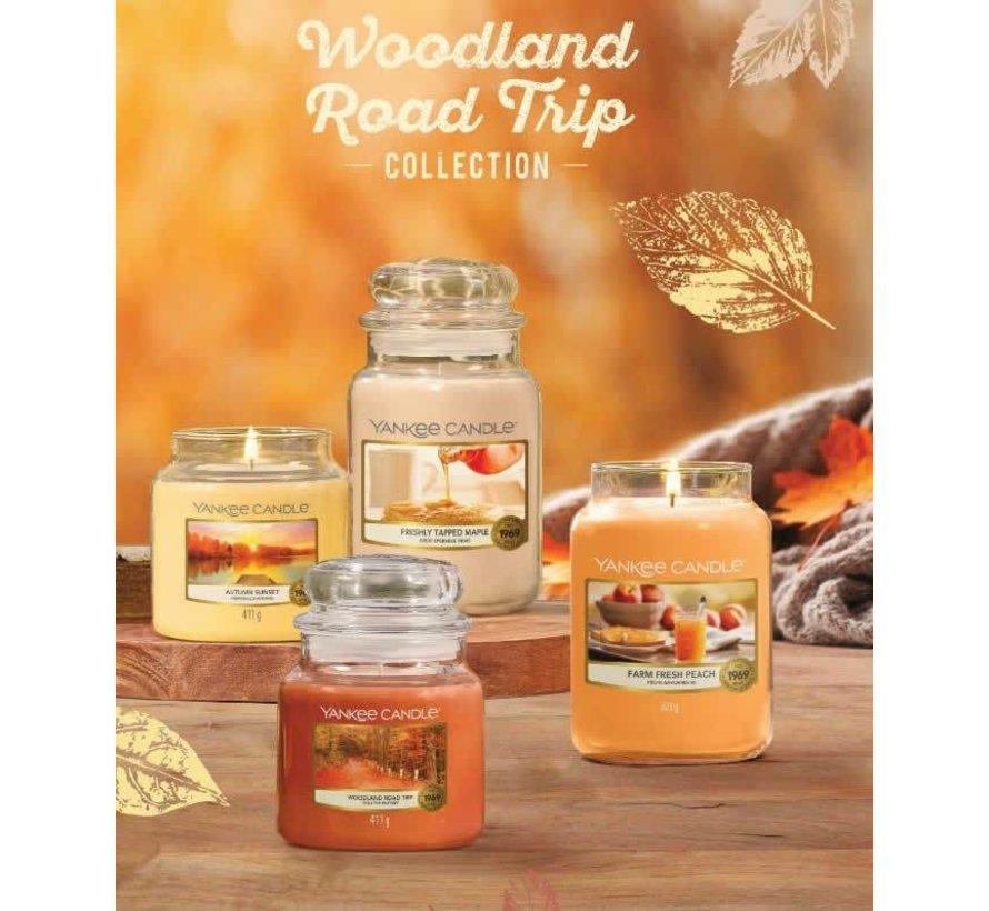 Freshly Tapped Maple  - Medium Jar