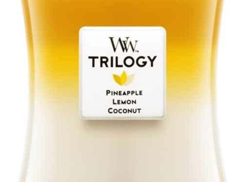 WoodWick Trilogy Fruits Of Summer - Medium Candle