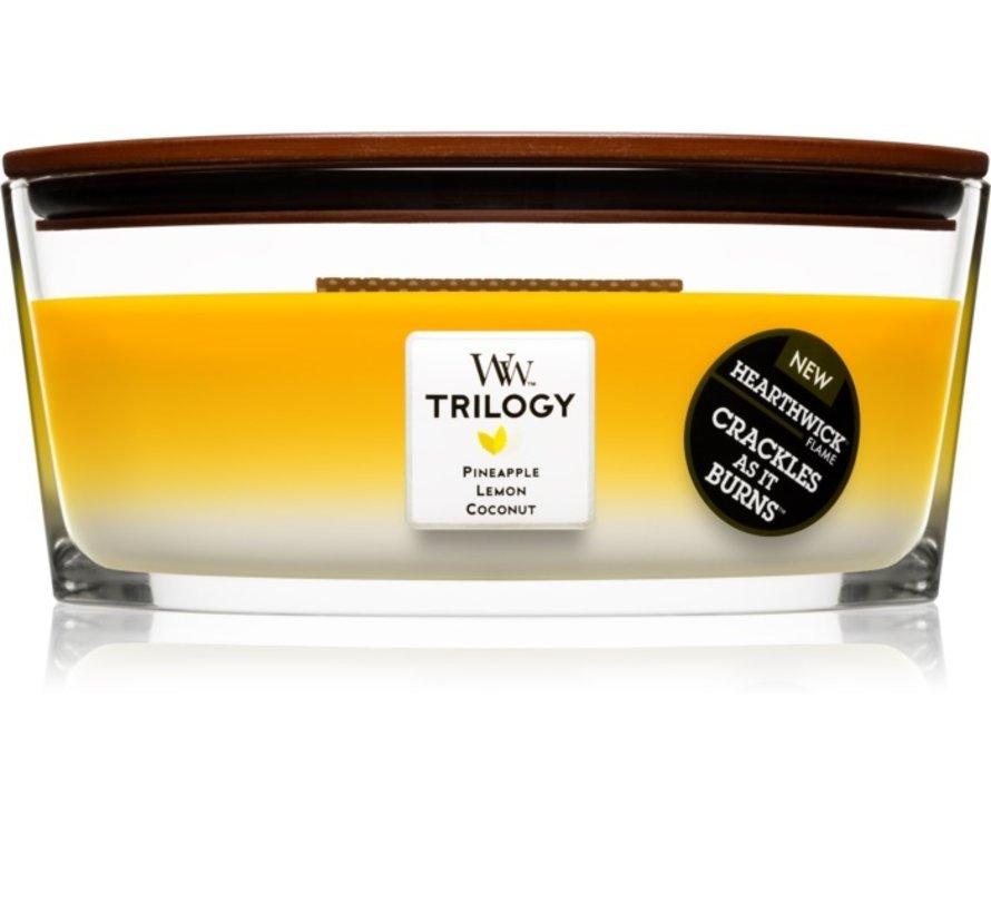 Trilogy Fruits Of Summer - Ellipse Candle