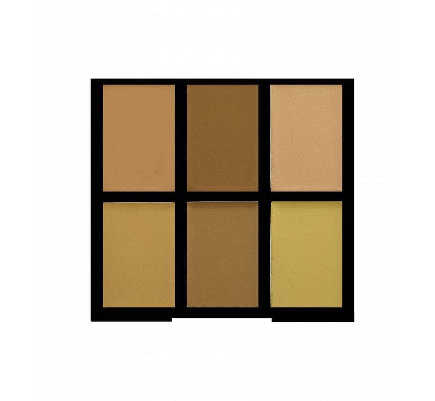 Pro Conceal Palette - Light/Medium