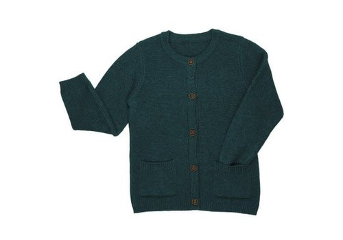 CarlijnQ CarlijnQ knit basics - cardigan with pockets (green)