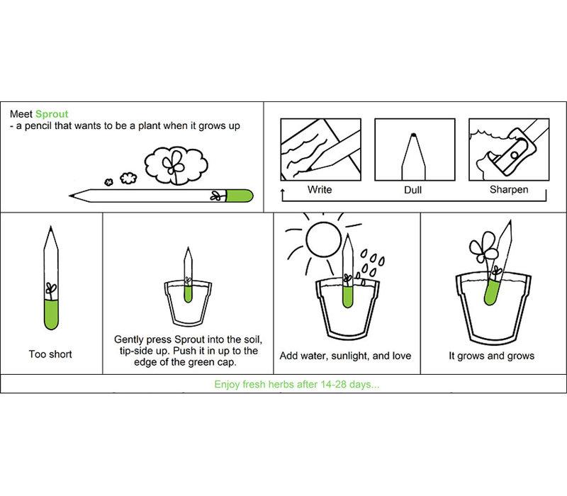 Sprout Tijm potlood
