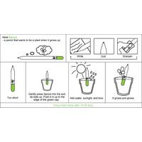 Sprout  Basilicum potlood