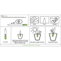 Sprout Vergeet-me-nietjes potlood