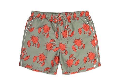 Ammehoela Ammehoela AM.Tyler dad.01 Happy-crab