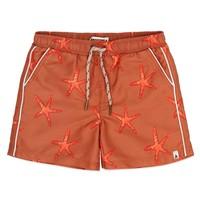 Ammehoela AM.Tyler.01 Starfish