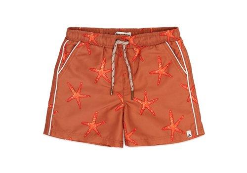 Ammehoela Ammehoela AM.Tyler.01 Starfish