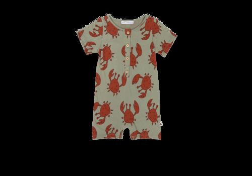 Ammehoela Ammehoela AM-.Ezzi.01 Happy-crab