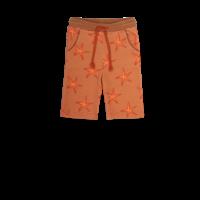 Ammehoela AM.Mase.02 Starfish