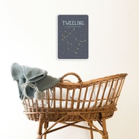 Milestone Zodiac Poster Card Tweeling