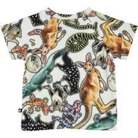 Molo Emmett Australian Animals