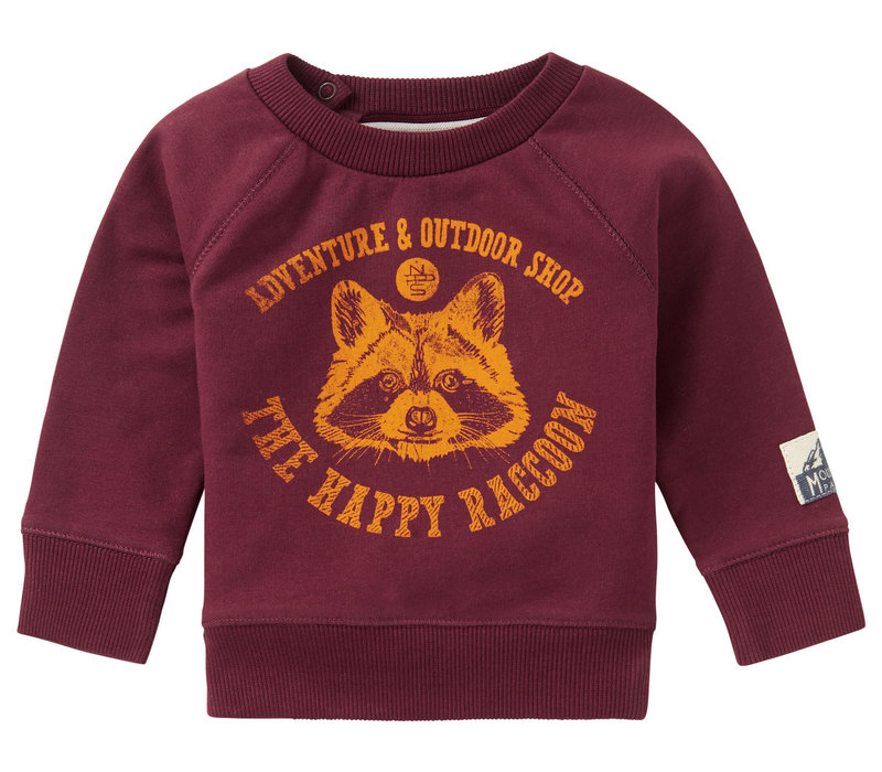 Noppies B Sweater LS Vredendal Dusty Red