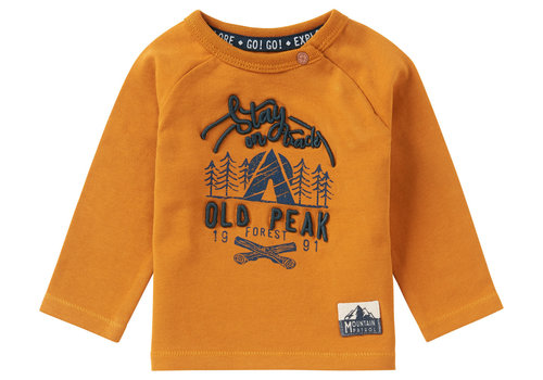 Noppies Noppies B T-Shirt LS Elliot Inca Gold