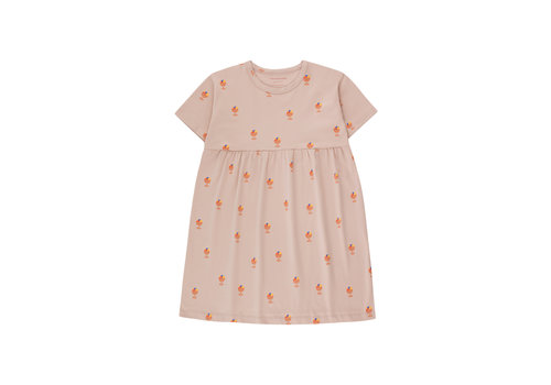Tinycottons Tinycottons ICE CREAM CUP DRESS  dusty pink/papaya