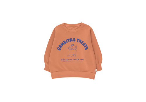 Tinycottons Tinycottons GAMBITAS TREATS SWEATSHIRT  cinnamon/iris blue
