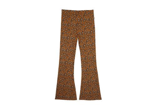 Ammehoela Ammehoela AM.Liv.Mom.05 Leopard