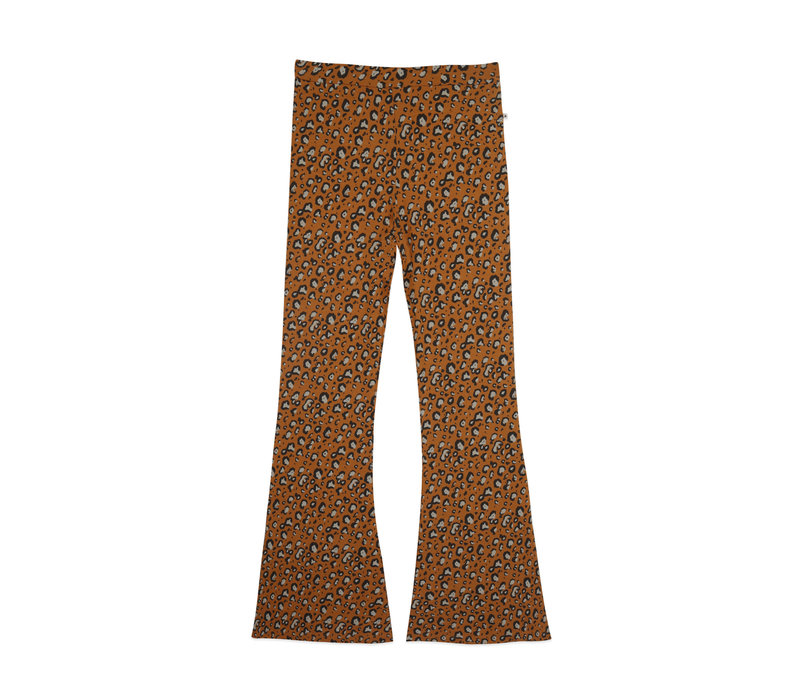 Ammehoela AM.Liv.Mom.05 Leopard