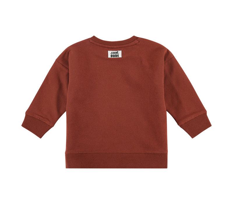 Babyface boys sweatshirt mahony