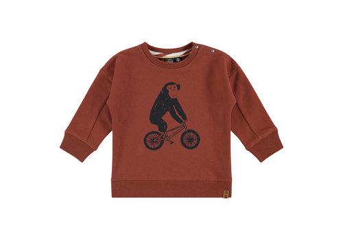 Babyface Babyface boys sweatshirt mahony