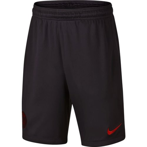 Nike PSG Dry Strk Short Oil grey-red